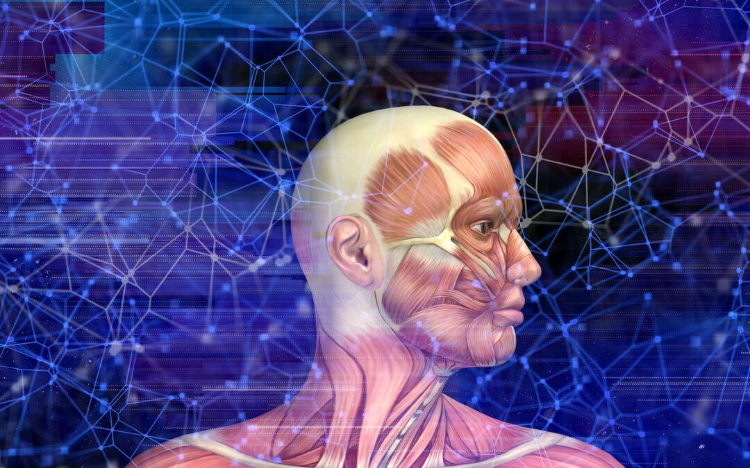 Hierojaopiskelijan pohdintoja hyvinvoinnista ja terapeuttisesta työskentelystä
